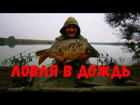 любительская рыбалка на карпа видео