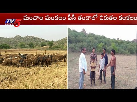 చిరుతల కలకలం | Chirutha Hulchul In Ranga Reddy District | TV5 News