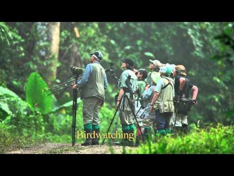 Photo Safari trip Sabah in the island of Borneo