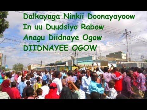 Diidnayee Ogoow