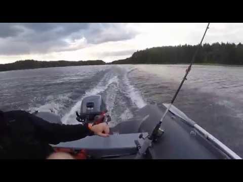 висагинас рыбалка