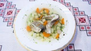 Рецепт ухи из форели Как варить уху дома Уха из форели Как приготовить вкусную уху Блюда из рыбы