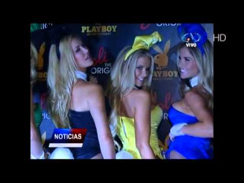 Conejitas Playboy en Antofagasta