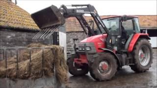download lagu Feeding Round Bale Silage To The Dairy Cows gratis