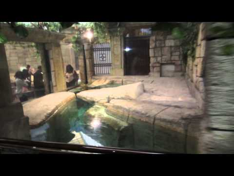 Vlog #3 | Las Vegas Mandalay Bay Aquarium