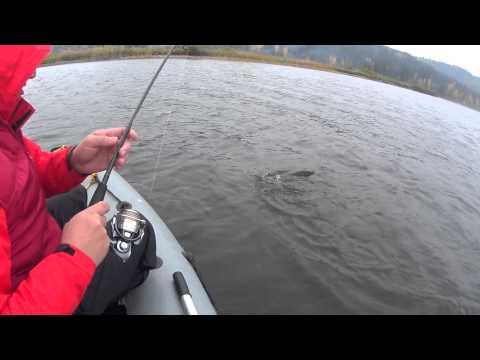кама рыбалка группа