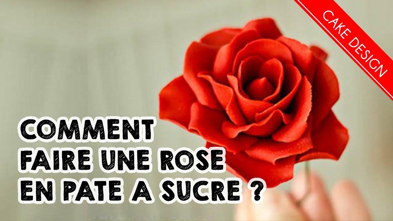 Comment faire une rose en p te a sucre sugarpaste for Faire des decors en pate a sucre
