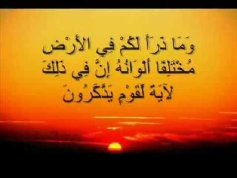 تلاوة  رائعة للشيخ خالد عبد الجليل
