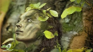 Dance of Life • Relaxing Celtic Music for Relaxation & Meditation