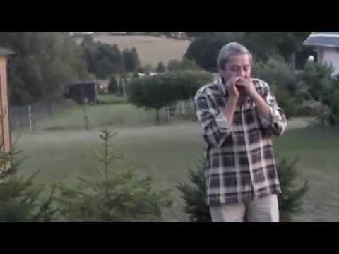 Płonie Ognisko W Lesie  ,na Harmonijce Ustnej Gra Wojciech Lipiński