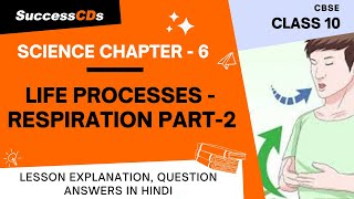 Life Processes Part 2 Respiration, Class 10 Biology,  NCERT Science Explanation, Question Answers
