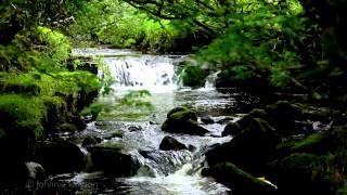 Download Lagu 100mins. Relaxing Classical Music Gratis STAFABAND