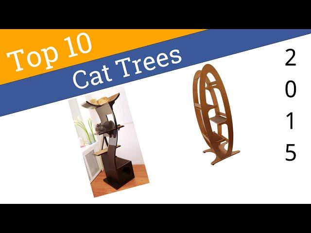 10 Best Cat Trees 2015