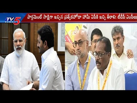 TDP MP's Speaks to Media Over AP Bifurcation Act Promises | TV5 News