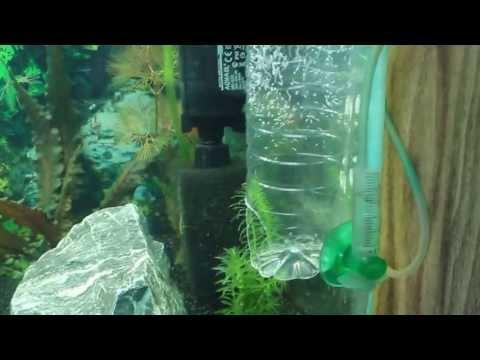 Светодиодный светильник своими руками аквариум