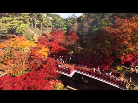 日本の風情を感じて 弥彦公園・もみじ谷の紅葉 弥彦村