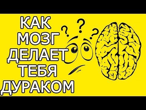 Как твой мозг обманывает тебя, делая жизнь хуже - Почему мозг враг мой и как мозг обманывает нас