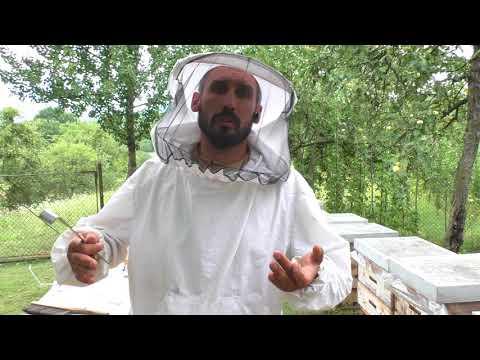 Зачем нужно сокращать пчелосемьи 25.07.2018