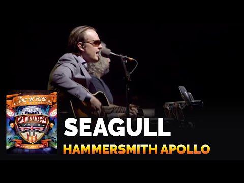 Joe Bonamassa - Seagull