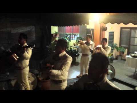 Mariachi #1 de Morelos en Cuernavaca