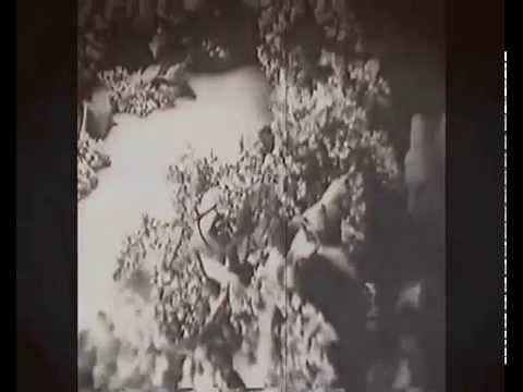 70 - летию Великой Победы. Никто не забыт. Андрей Мурашов