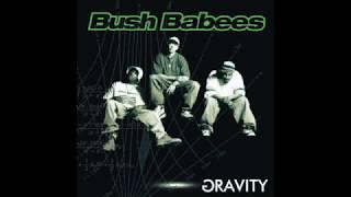 Watch Bush Babees Gravity video