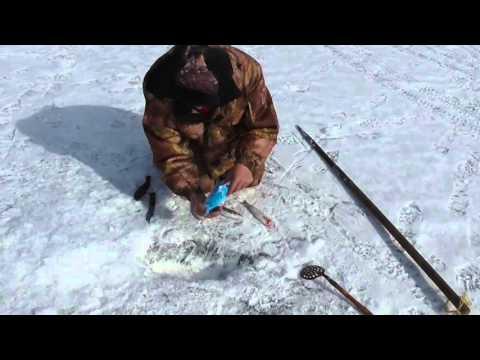байкальская рыбалка на хариуса