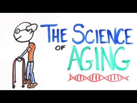 Chvilka s vědou: Proč stárneme