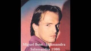 Miguel Bosé - Salamandra