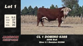 Lot 1 - CL 1 Domino 638S