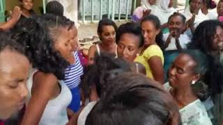 New Ethiopian 2018 best Sewhunegn terefe and sefiager mesifin  wedding music