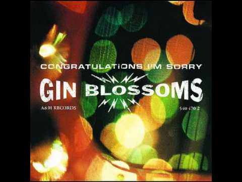 Gin Blossoms - Virginia