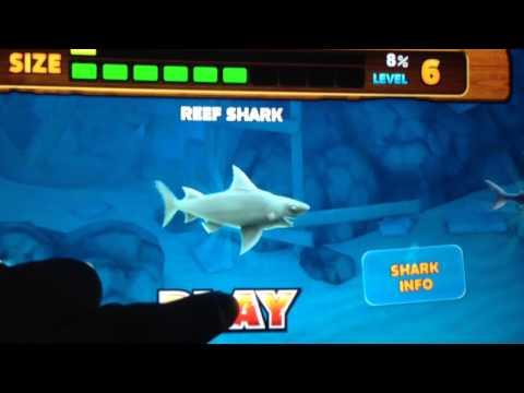 Hungry Shark Evolution money cheat