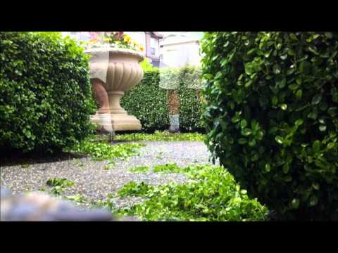 Bothell Landscaping Services, Mill Creek Landscapers Wa