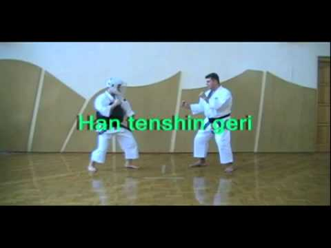 Shorinji Kempo Techniques - 2 Kyu Goho Image 1