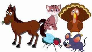 Звуковая песня животных   Дети видео   Animal Sound Song   Learn Animals   Kids Educational Song