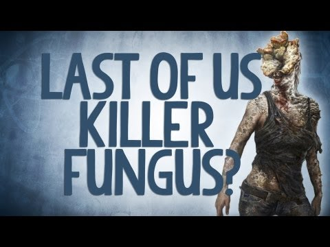 Is the Last Of Us Killer Fungus Real? - Reality Check