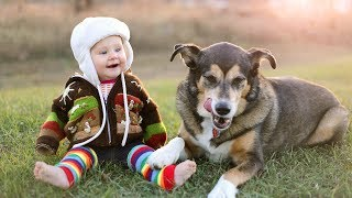 Cute Babies Laughing at Dogs Compilation 2015