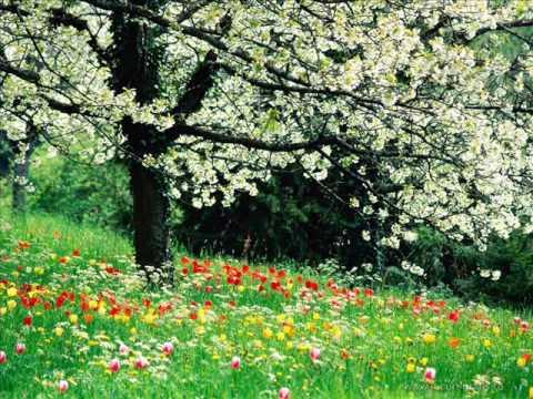 mondial - Primăvara