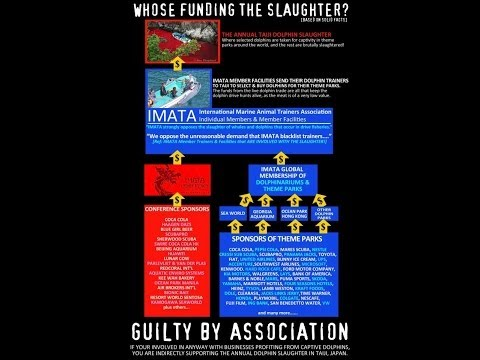 Taiji Dolphin Activism FAQ / Q&A: Culture Or Profit? Marine Park Involvement? Why Not Cut Nets? Etc.