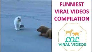 LOL VIRAL VIDEO 13th Sep 2018