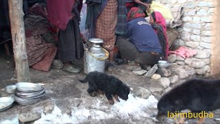 cleaning the plate    Nepal    village life    himalayan life   