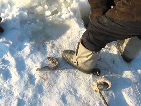 Снасть на налима зимой на стук своими руками