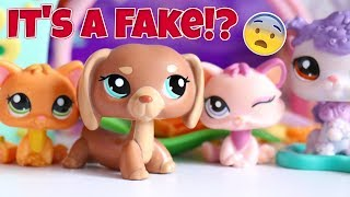 Did I Get Scammed..?    LPS eBay Package