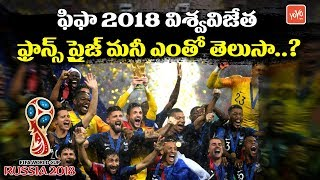 FIFA World Cup 2018 Final Winner Prize Money..? | France vs Croatia 2018