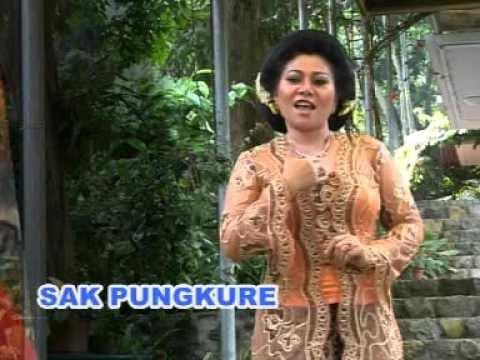 Cengkir Wungu - Anik Sunyahni
