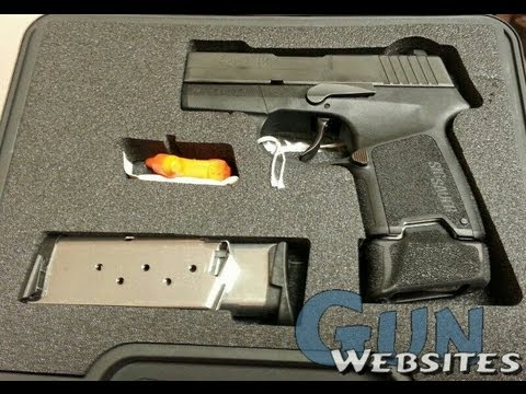 Sig P-290 - Should I Buy ??