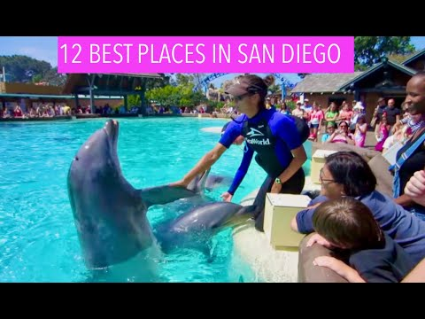 San Diego: Vacation Travel Tour Guide