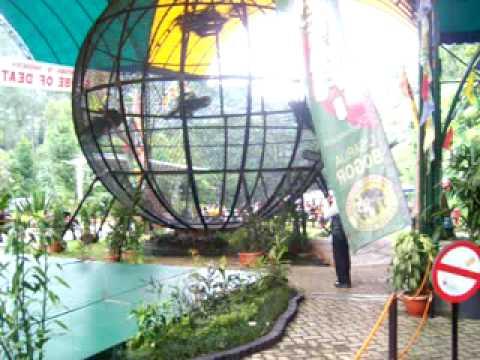 Globe Of Death Indonesia