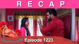 RECAP : Priyamanaval Episode 1223, 22/01/19